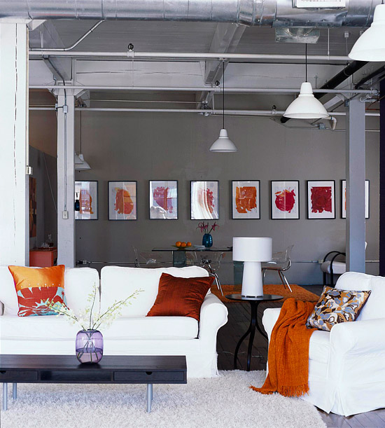 Burnt Orange Accent Wall: Cayman Inspiration: Grotesque Grey Stingrays