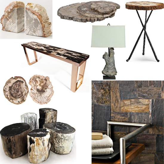 interior design petrified wood shopping guide